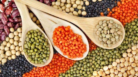 نرخ تضمینی خرید دانه های روغنی باید توسط دولت اعلام شود