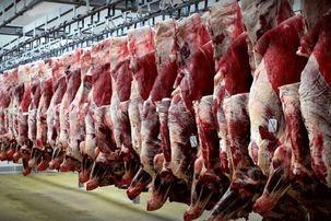 گوشت قرمز در کشور با افزایش تولید مواجه شد