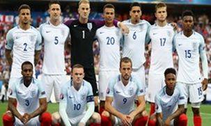احتمال تاخیر در بازی تونس با انگلیس بخاطر هجوم پشه ها