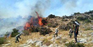 اختصاص دادن 150 میلیارد ریال بودجه اطفای حریق هوایی برا از بین بردن آتش سوزی جنگل ها