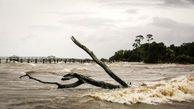 سیل باعث به گل نشستن پالایش نفت در تگزاس شد