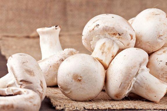 انواع  قارچ  در میادین میوه و تره بار+ قیمت