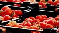 صادرات بیش از 241 میلیون دلار صیفیجات در پنج ماهه نخست سال