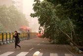 پیشبینی وزش باد نسبتا شدید در تهران و چند استان دیگر
