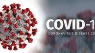 کروناویروس 2019 ویروس پیشبینی شده در سال 2013/آیا کرونا دو نوع خفیف و قوی دارد؟
