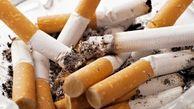 ۷۰ درصد از بازار دخانیات در اختیار دو شرکت خارجی