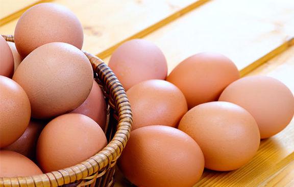 نمی توانیم قیمت تخم مرغ را بپذیریم!