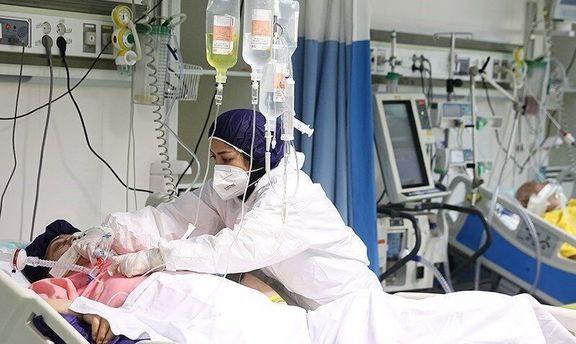 فوت ۲۳۳ نفر در شبانه روز گذشته بر اثر کرونا