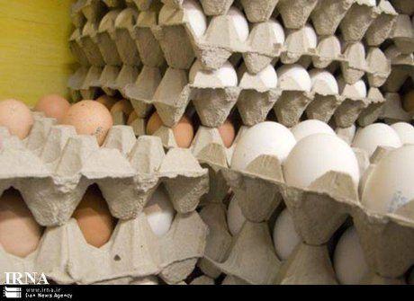 قیمت تخم مرغ درب مرغداری کیلویی 12 هزار تومان