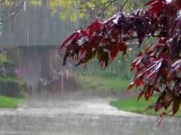 سازمان هواشناسی هشدار داد/ وقوع سیلابهای ناگهانی در ۱۵ استان کشور