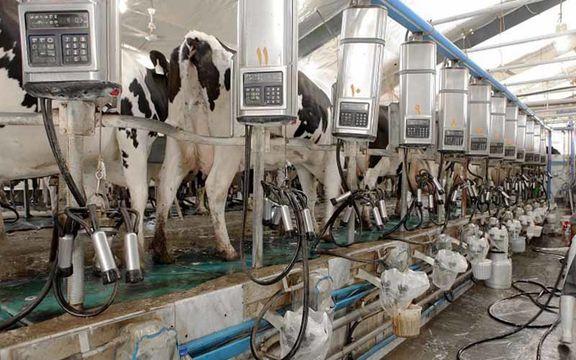 قیمت شیرخام هر کیلو  2000 تومان اعلام شد