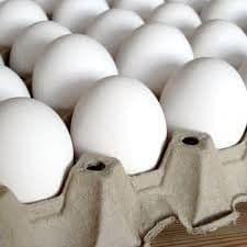 قیمت تخم مرغ تا 10 روز آینده کاهش خواهد یافت