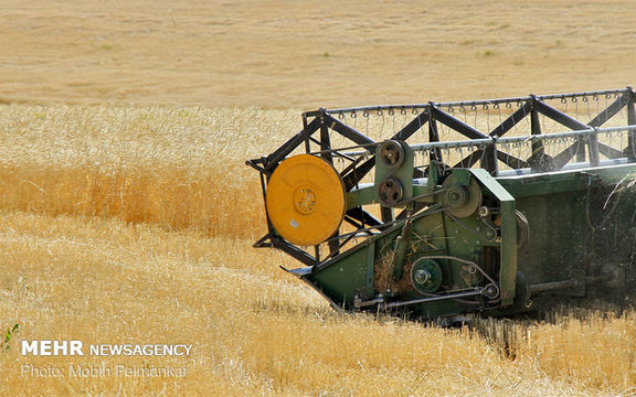 در صورت گرانی کود کشاورز نمی تواند حجم تولیدات خود را افزایش دهد