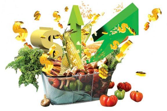 آخرین قیمت مرغ و دیگر نهاده های دامی و کشاورزی
