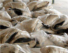 کشف محموله 290 کیلویی تریاک در تهران