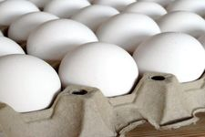 قیمت تمام شده تخم مرغ برای تولید کننده چقدر است؟