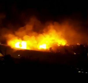 آتشسوزی در پارک جنگلی چیتگر + فیلم