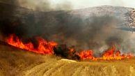 آتش سوزی دهلران همچنان ادامه دارد/گرمای هوا مانع خاموش شدن آتش شده است