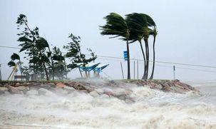 خسارات وارد شده به کره جنوبی بر اثر طوفان