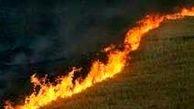 بازار گل «امام رضا» در تهران دچار آتشسوزی  شد