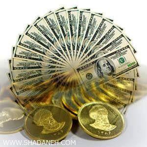 پلیس حساب فعالان سکه و ارز را کنترل می کند