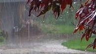 هشدار سازمان هواشناسی درباره وضعیت آب و هوا در هفته اول فروردین / ورود دو سامانه بارشی به کشور