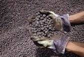 تولید بیش از ۴۶ میلیون تن کنسانتره آهن توسط شرکتهای بزرگ معدنی در 11 ماهه 99