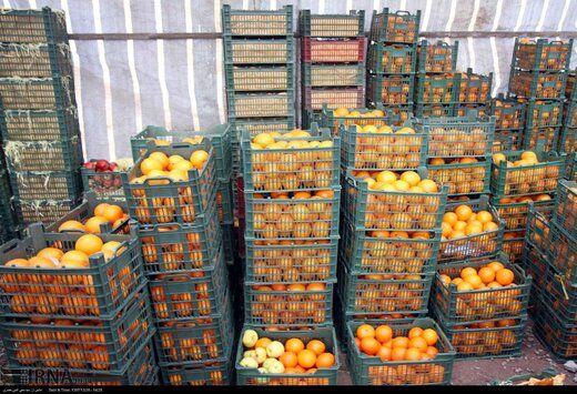 راهکار اصلی حذف واسطههای میوه تقویت تشکلهای کشاورزی است