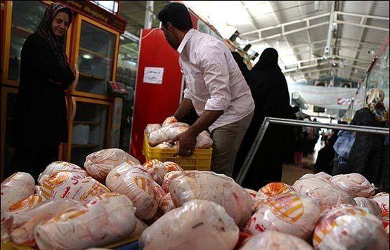 قیمت مرغ از قیمت مصوب قانونی عبور کرد / هر کیلو مرغ 8000 تومان