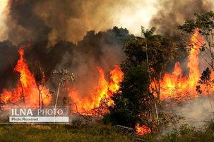 مجلس خواستار توضیح از وزیر اطلاعات و وزیر کشور درباره آتش سوزی های اخیر شد