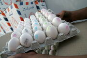 قیمت هر شانه تخم مرغ در بازار بین 25 تا 30 هزار تومان است