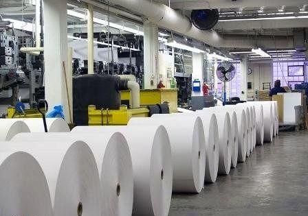 وزارت ارشاد نتوانست جلوی افزایش قیمت کاغذ را بگیرد